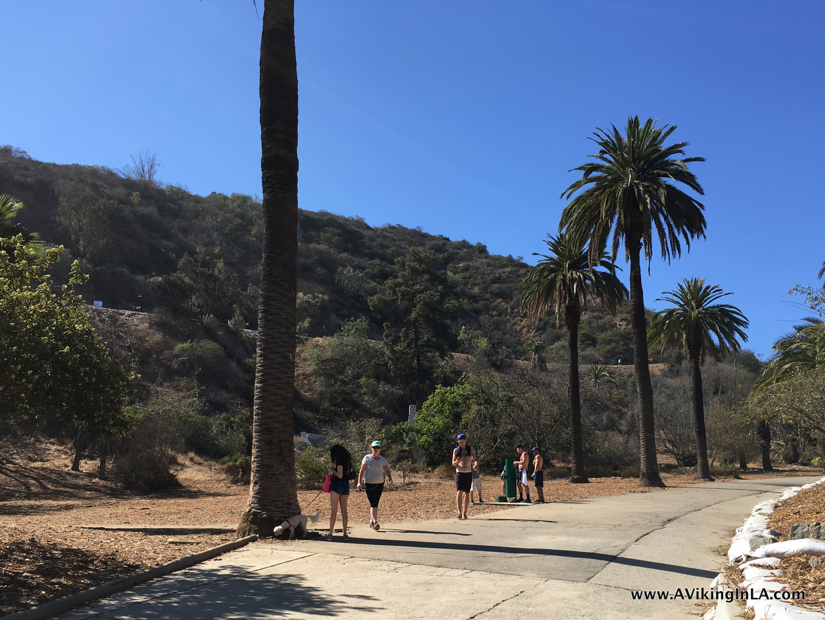 Runyon Canyon junction