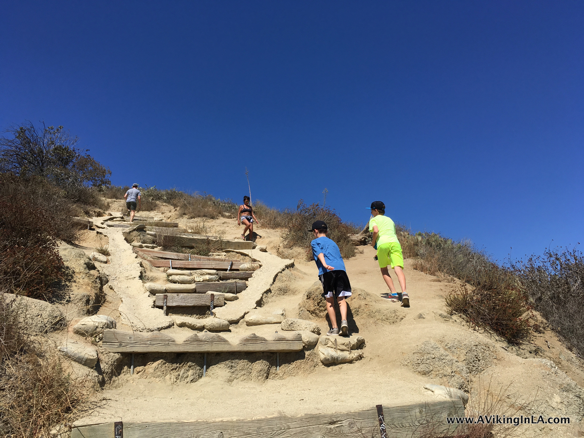 Runyon Canyon steps
